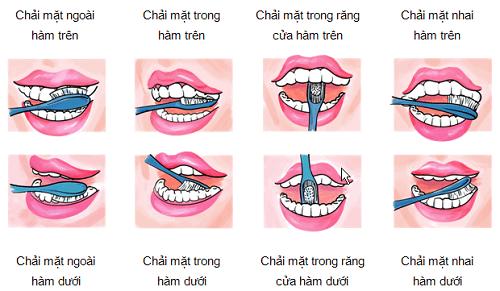 7 bước để đánh răng đúng cách