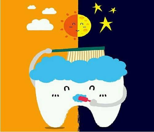 Cách đánh răng đúng kỹ thuật CHUẨN quốc tế được áp dụng rộng rãi 2