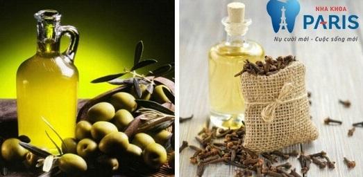Chữa sâu răng đơn giản bằng dầu oliu và đinh hương
