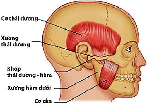 đau quai hàm khi nhai