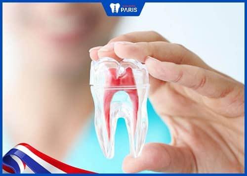 bọc răng sau khi lấy tủy