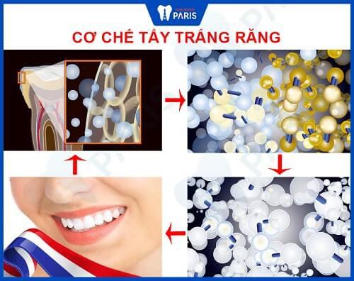 cơ chế tẩy trắng răng