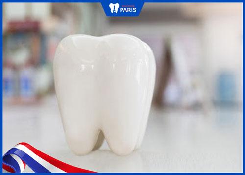 kỹ thuật làm răng toàn sứ ddbio