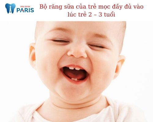 Bộ răng sữa có bao nhiêu cái? Khắc phục răng sữa bị sâu, lung lay, không rụng,…