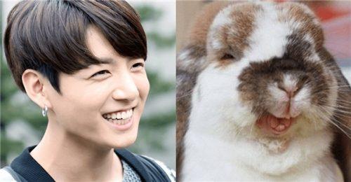 răng thỏ nam